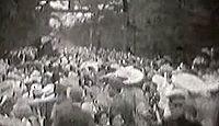 飯香岡八幡宮 - 日本武尊以前の創祀、天武朝の創建、上総国一国一社の八幡宮かつ総社