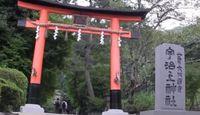 宇治上神社 - 国宝「現存最古の神社建築」で応神皇太子・和紀郎子が祀られる