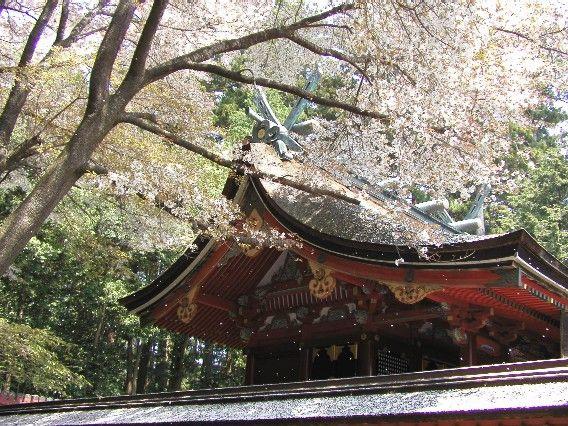 [宮城県]初詣で人気の神社のキャプチャー