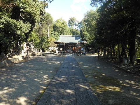 伊射奈岐神社 正面の鳥居をくぐって境内を望む - ぶっちゃけ古事記