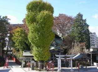 「川越八幡宮で古事記を学ぼうコン」という寺社好き男女の婚活企画、2014年12月20日開催のキャプチャー