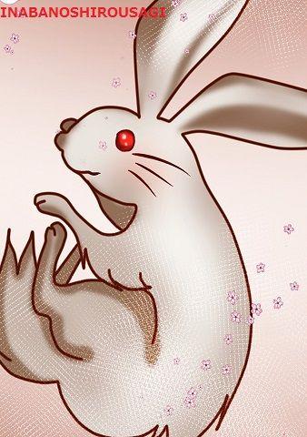 因幡の白兎 - 自業自得でも悪びれないお茶目なウサギ【ぶっちゃけ古事記のキャラ図鑑】のキャプチャー