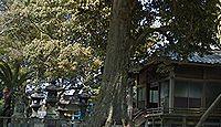 八幡神社(北野町) - 戦国期に改称したもとの豊比咩神社、9月例祭は2000発の奉納花火