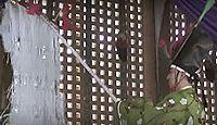 重要無形民俗文化財「長滝の延年」 - 古い延年の古風を遺し伝える養蚕豊作の祈願のキャプチャー
