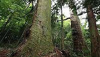 大杵社 - 弥生後期の創建、全国第2位の樹齢1000年の大杉、由布院NO.1のパワースポット