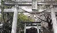 氷川神社 埼玉県川口市鳩ヶ谷本町のキャプチャー
