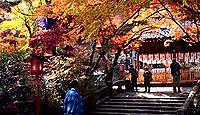 鍬山神社 - 兎と八幡神の鳩がけんかする伝承が残る口丹波の開発神、紅葉の名所として有名