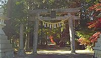 伊尼神社 兵庫県丹波市氷上町新郷