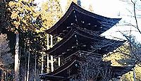 新海三社神社 - 開拓神である大国主命の孫神を祀る佐久の総社、武田信玄など武将の崇敬