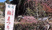 龍尾神社 - 春のしだれ梅で知られる山内一豊も崇敬した掛川城の守護神、10月に掛川祭