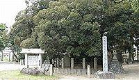 神明社(上永良) - 武将・加藤嘉明の生誕地、県下最大のスダジイ・大シイが天然記念物