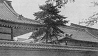 御巫等祭神八座 いわゆる八神殿 - 延喜式神名帳