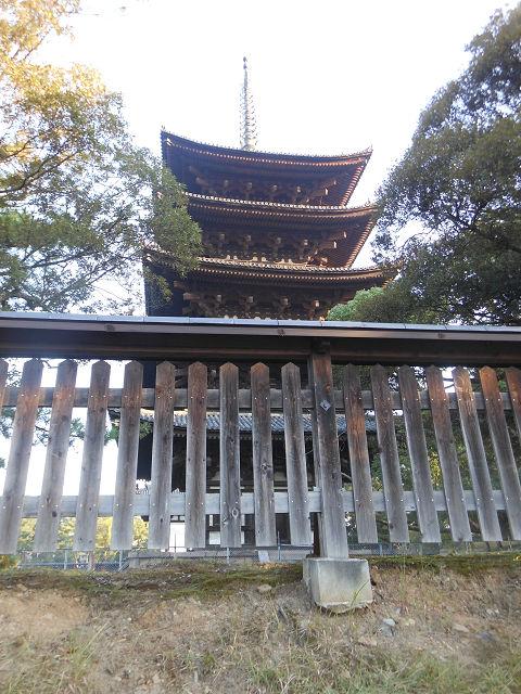 春日大社への道すがら、興福寺・五重塔を右手に見ながら - ぶっちゃけ古事記