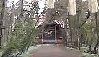 浦臼神社 - 4月下旬にピンクとブルーの絨毯に染め上がる感動的な境内、シマリスやキツネも