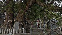 岡上神社 徳島県板野郡板野町大寺