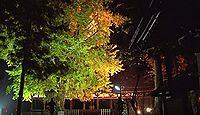 新宮熊野神社 - 重文の「長床」拝殿と大イチョウで知られる、源頼義・義家ゆかりの古社