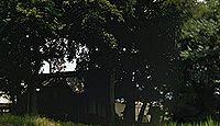 於神社(観音寺市) - 粟井町上野に鎮座する上野八幡宮、丸亀藩主京極高矩による再興