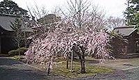 名和神社 - 隠岐島を脱出した後醍醐天皇を迎え倒幕に参加した名和長年を祀る