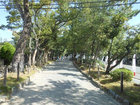 大神神社の歩行者用参道、美しい並木道 - ぶっちゃけ古事記