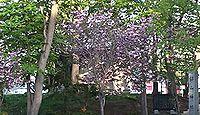 錦山天満宮 - 創祀は明治中期、20世紀後半に太宰府天満宮を勧請した北海道江別の天神さま