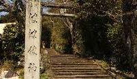 波波伎神社 - 国譲り後の事代主命の荒魂が鎮まった宮、伯耆の総氏神、裏手には福庭古墳