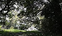 鹿島神社 石川県加賀市塩屋町「鹿島の森」