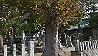 松本神社(白山市) - 御祭神は菅原道真、古くから松本の産土神で天満社とも