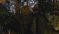 市杵島神社(高島市) - 境内社に「大野神社」「小野神社」式内論社がある神社