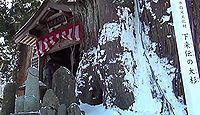 ほだれ大神(長岡市) - 3月に「ほだれ祭」、高さ2.2メートルの巨大な男根形の御神体