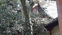 元伊勢「隠市守宮」伝承地の一つである宇流冨志禰神社(名張市平尾)