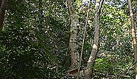 井中神社 - 神宮125社、外宮・末社 伊我理神社に同座する、神田の井泉の守護神