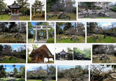 松井神社 熊本県八代市北の丸町のキャプチャー