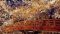 高遠城 信濃国(長野県伊那市)のキャプチャー