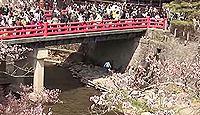 日枝神社(高山市) - 創建由緒でもある樹齢1000年の大杉、高山祭が有名な飛騨山王宮