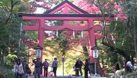 日吉大社 - 豊臣秀吉ゆかり、全国に約2000社ある日吉・日枝・山王神社の総本社