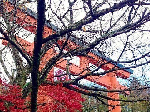ご利益ごとに見る日本の神々のキャプチャー