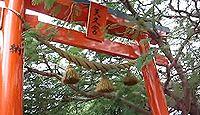 天久宮 - 山の中腹に住む熊野権現と山上の森に住む弁財天の不思議な由緒が残る琉球八社