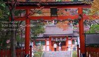 """大野原神社 - """"京春日""""の別称がある春日大社からの勧請の二十二社の一社"""