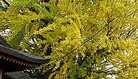 乳保神社 徳島県板野郡上板町瀬部のキャプチャー