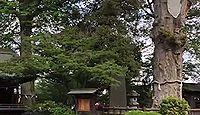 広瀬神社(狭山市) - ヤマトタケルが大和廣瀬大社を勧請した式内社、10月に神輿巡幸