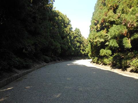 神武天皇陵の広々とした、緑も清々しい参道 - ぶっちゃけ古事記