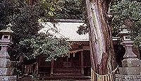 来宮神社(伊豆市八幡) - 大見郷鎮守、大見三人衆の後裔が補修、樹齢400年の鳥居スギ