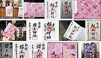 櫻木神社(文京区)の御朱印