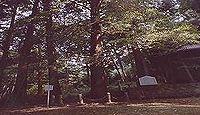 杉森神社(高浜町) - 若狭国内神名帳の山井杉杜明神か、境内に2株のオハツキイチョウ