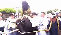 東湖八坂神社 - 7月の「牛乗り・蜘蛛舞」統人行事で知られる、平安初期田村麻呂の創建