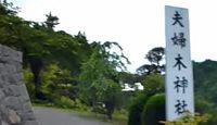 夫婦木神社 - 入口に女陰、内部に男根が垂れ下がるように見える御神木への信仰