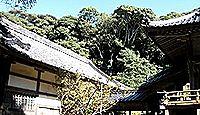 海神神社 - 対馬市にある複数の式内社の論社、神功皇后ゆかり、のち祭神はトヨタマに
