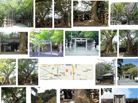 伊久比売神社 和歌山県和歌山市市小路のキャプチャー