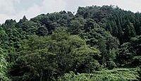 松上神社(松上) - 周辺に多い同名の神社や御祭神、天然記念物のサカキ樹林や秀衡杉