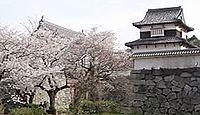 福岡城 筑前国(福岡県福岡市)のキャプチャー